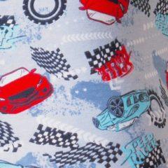 Carros Speed Racer